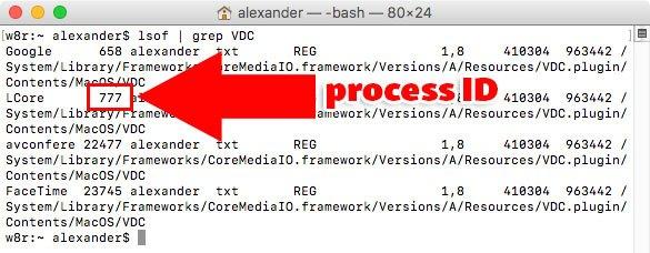 terminal-webcam-proceso-id
