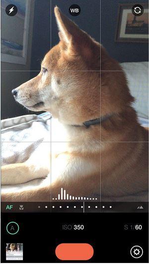 Manual: aplicación para iOS de cámara de exposición personalizada.