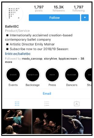 excelente biografia de instagram
