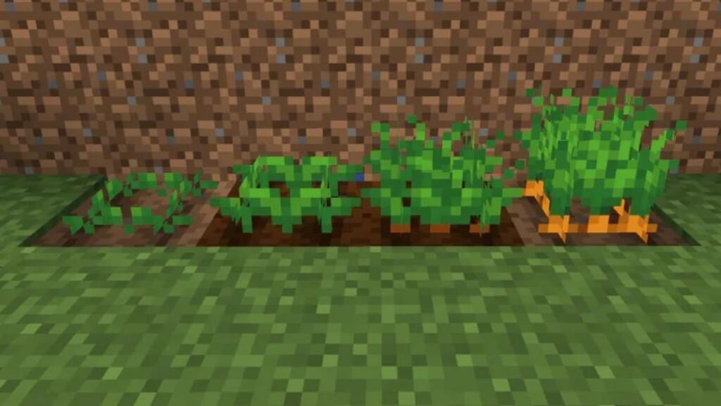 Minecraft Zanahorias 1 - Moyens I/O