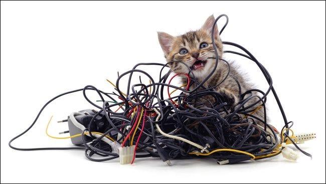 Un gatito que muerde un montón de cables.
