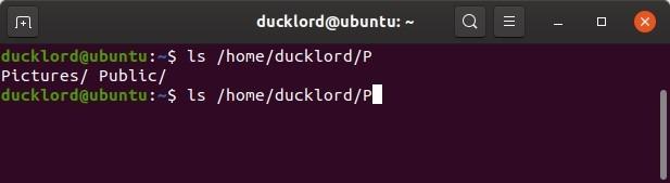 Mover el cursor en Bash Autocompletar Ls