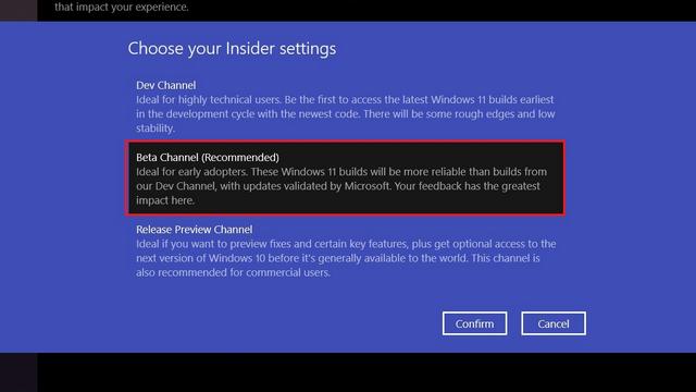 elija un canal interno - Instale Windows 11 Beta