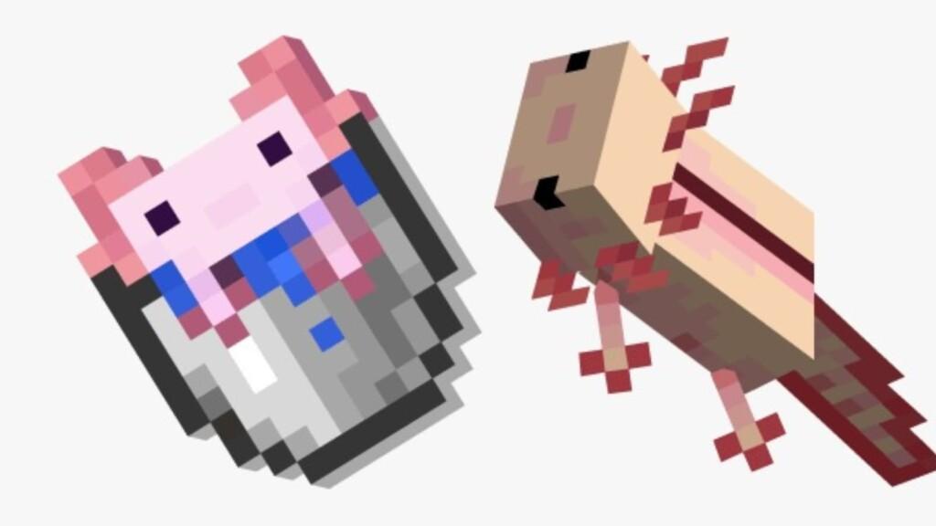 Cubo de Axolotl en Minecraft
